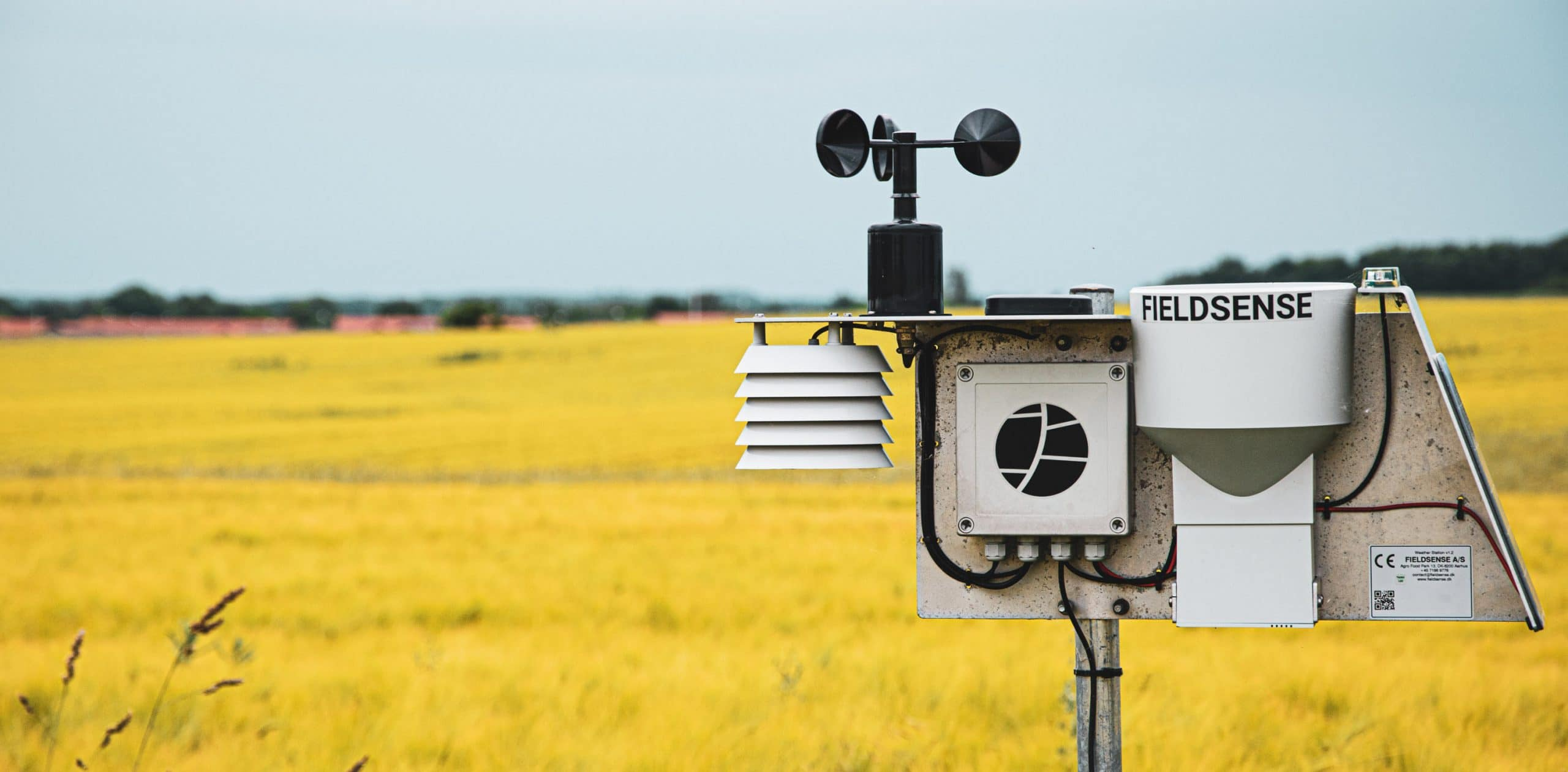 FieldSense Farm Weather Station
